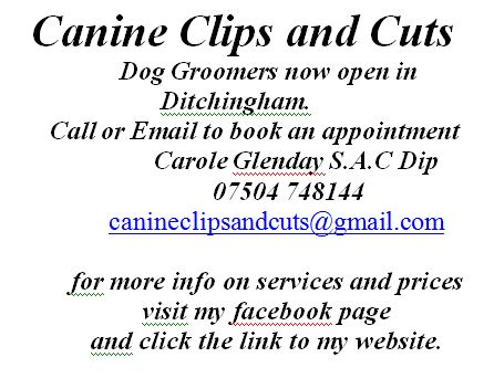 Canine Clips & Cuts